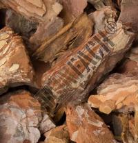Tree bark 25/40 mm